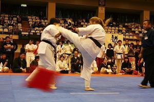 2011 第10回オープントーナメント 国際親善レディース&シニア全日本空手道選手権大会、第10回オープントーナメント 極真サムライ杯 秋の陣 空手道選手権大会