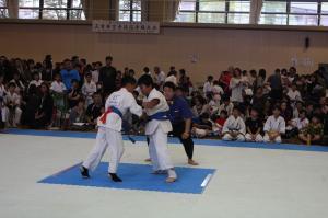 IMG 4819