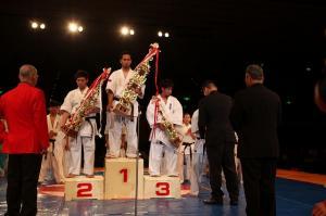 2015 グランドチャンピオン決定戦、全日本ウェイト制