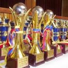 2006 全韓国極真空手道選手権大会
