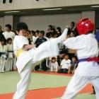 08samuraiS004