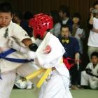 08samuraiS013