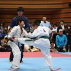09_fuyujin0096