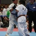 09_fuyujin0203