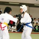 2009 第8回サムライ杯 春の陣 空手道選手権大会