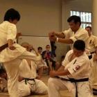 2009 第2回全日本試斬道選手権大会