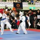 09toyama4_018