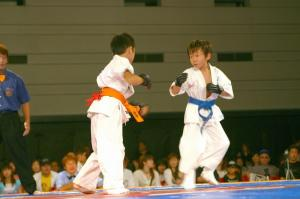 2004 第9回 グランドチャンピオン大会