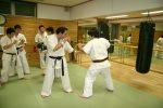 yoshikawa_2008_1