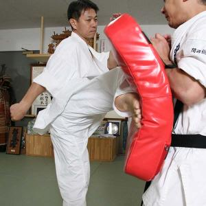 takedatoshiro04